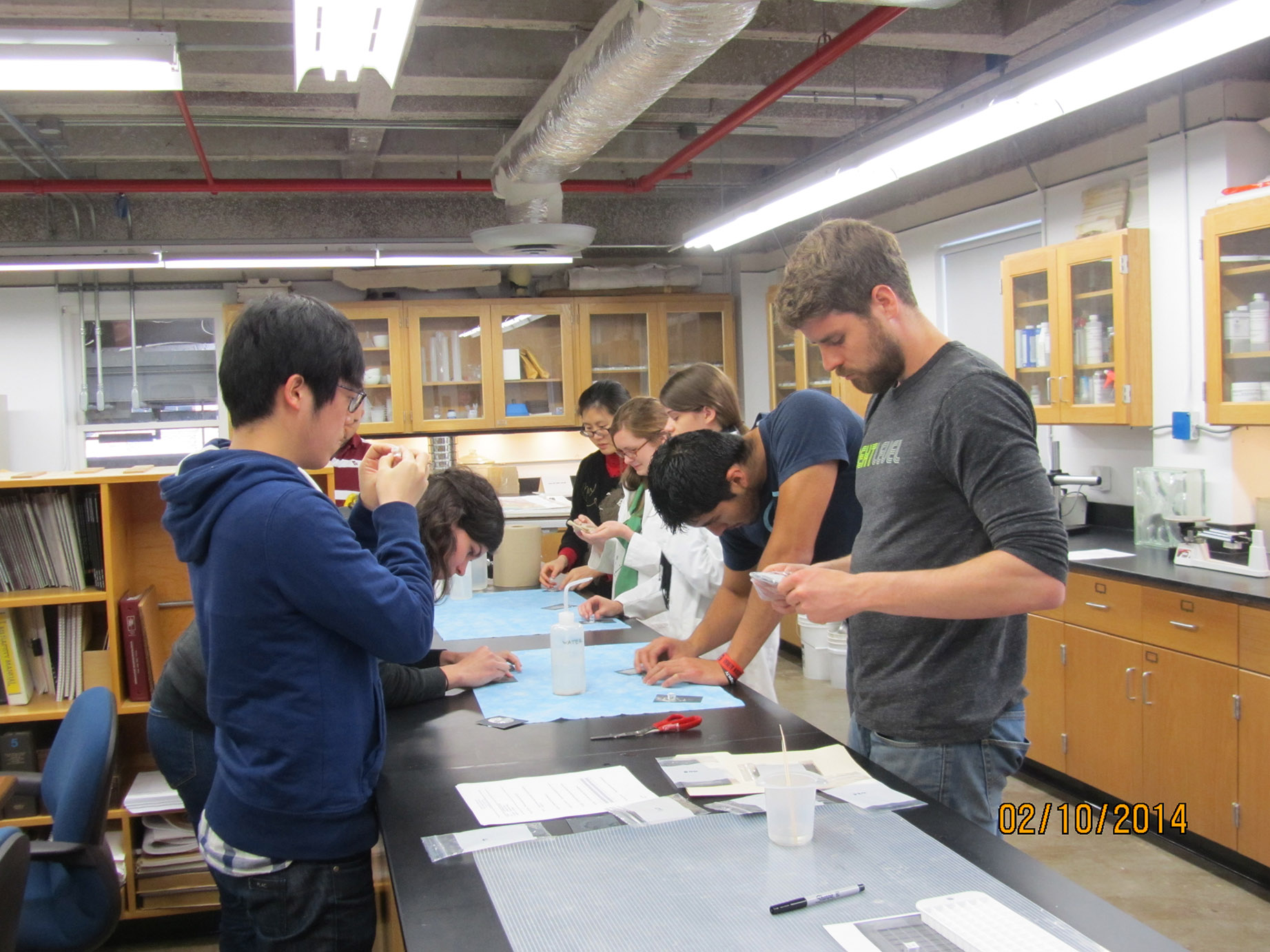 Students Working in the Conservation Lab