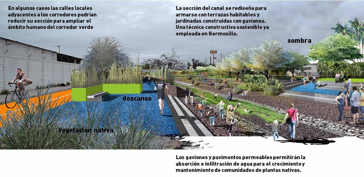 Protypical green corridor on the low to middle income residential areas of Hermosillo