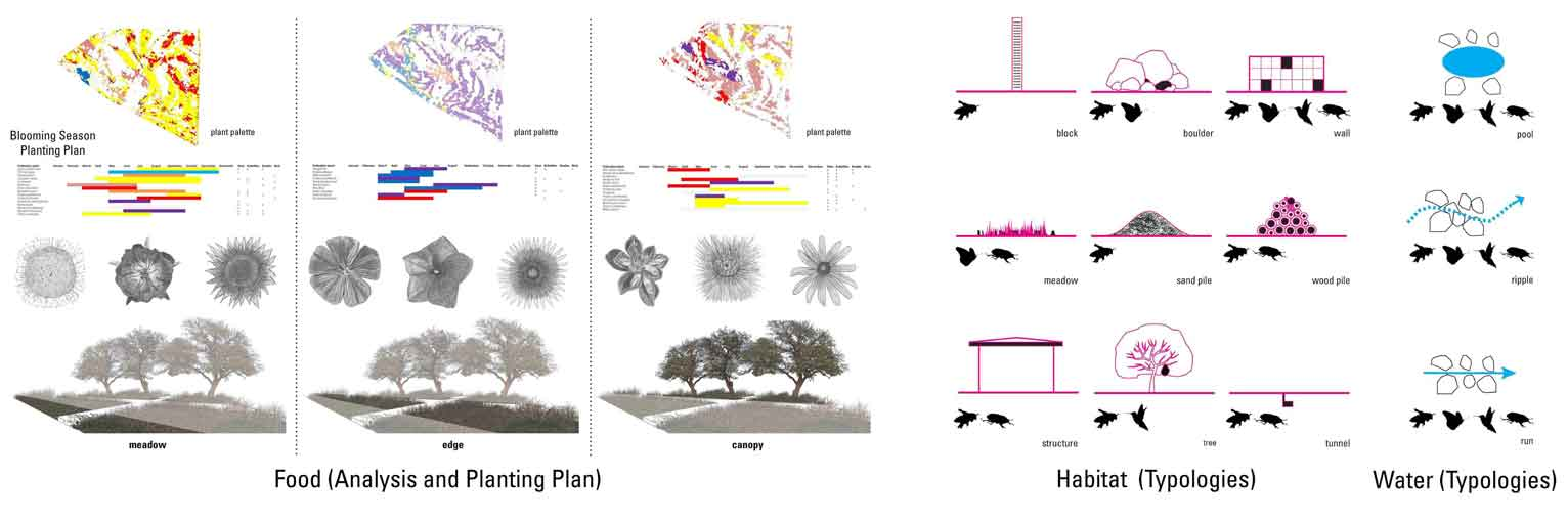 Diagrams and analysis pollination park issue submission reduced copy diagrams site analysis and planting plan ccuart Images