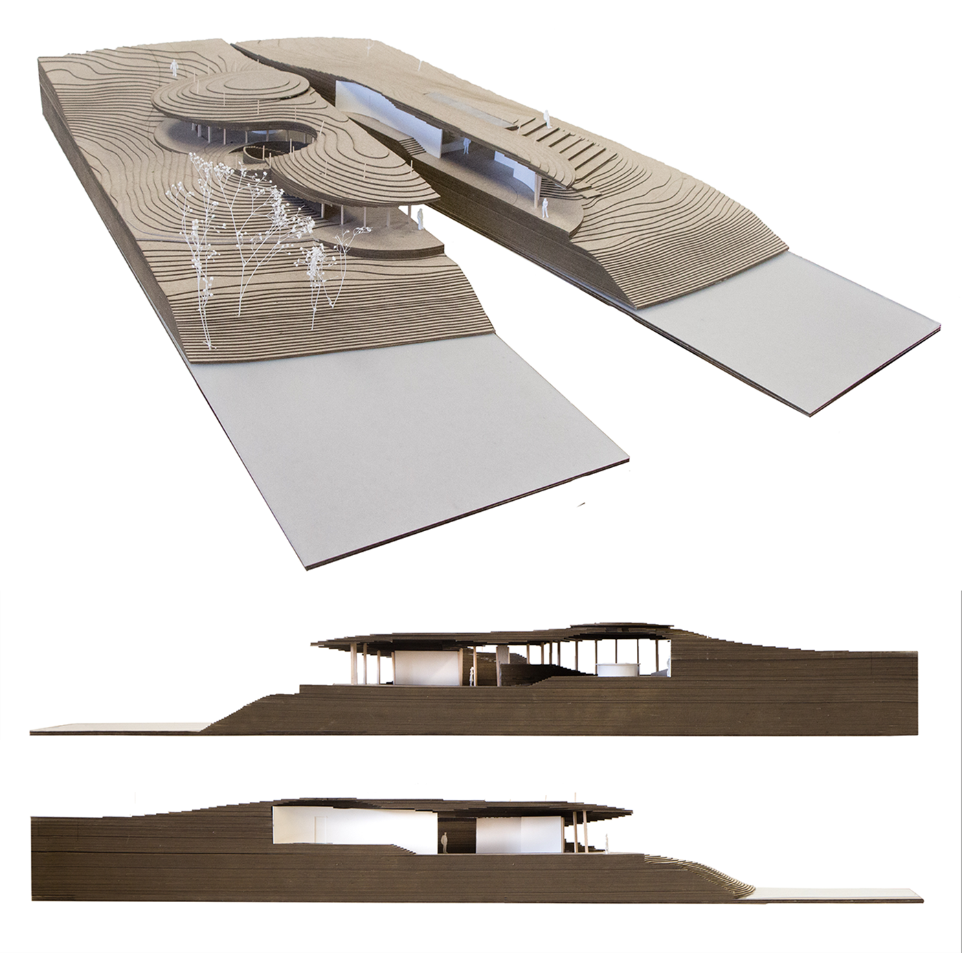 Final Model Section Collage