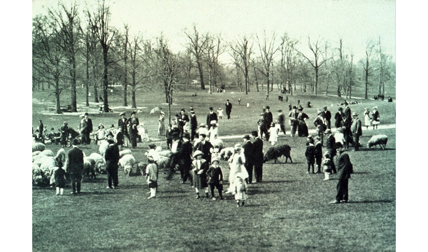 Sheep Grazing Among Strollers in the Park, Brooklyn, NYFrederick Law Olmstead, 1866-73