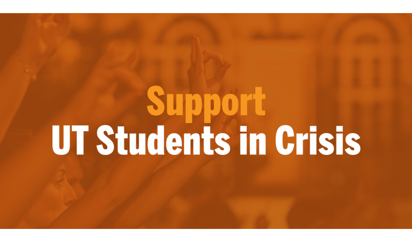 Hands in the Horn's Up symbol with text reading: Support UT Students in Crisis
