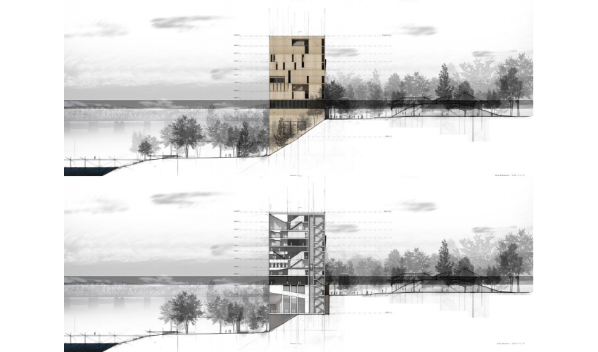 Site Elevation and Section