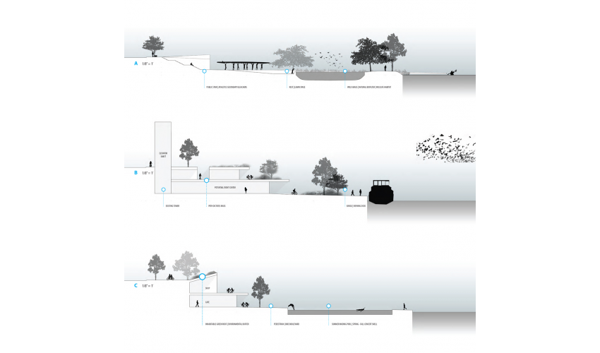 Site Sections