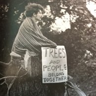 Student occupies the remnants of a tree on Waller Creek, 1969