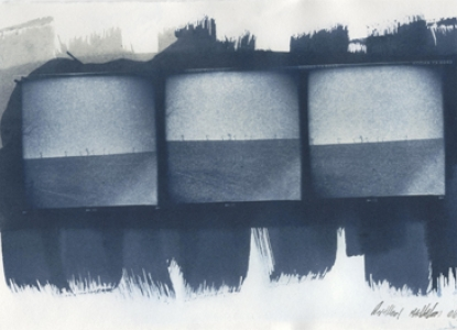 Cyanotype, Untitled, Anthony Maddaloni, 2006