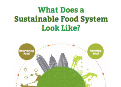 Infographic of Austin's food system