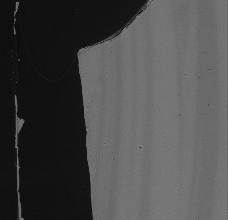 Detail of SEM/BSE image at 20 kV with ~8nm step of the left edge of sample 6S cross-section. A band of microlites is following the contour of the edge of the glass rather than the compositional bands.