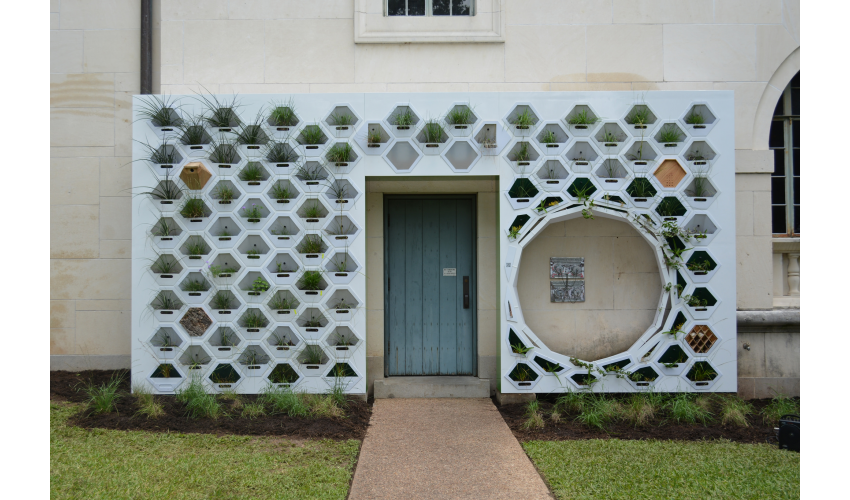 Exterior shot of the northwest corner of Goldsmith Hall, where the UTSOA Living Wall is on display. Features a series of honeycomb-like components, each filled with native Texas plants