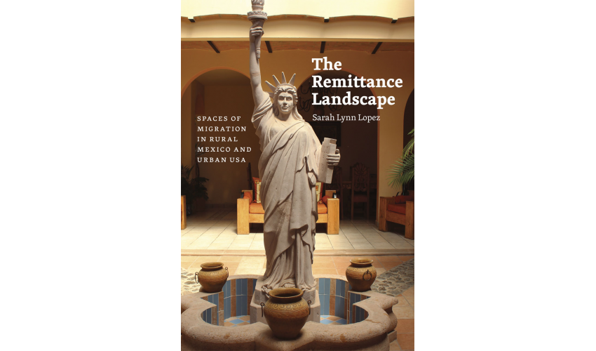 The Remittance Landscape cover