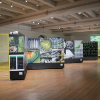 """Overall view of the OTHER NATURE exhibit on display in the Mebane Gallery, featuring an accordion of poster boards, bookended by yellow """"cages"""" with air plants housed inside. On the far back wall is a video of butterflies"""