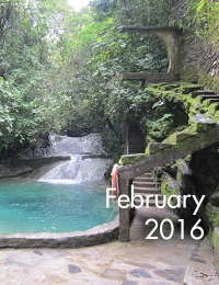 VRC e-newsletter | Project Highlight: Las Pozas cover